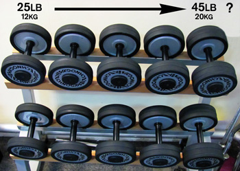 dumbbell rack with small selection of weights